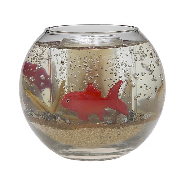Gold fish bowl for Fish bowl price